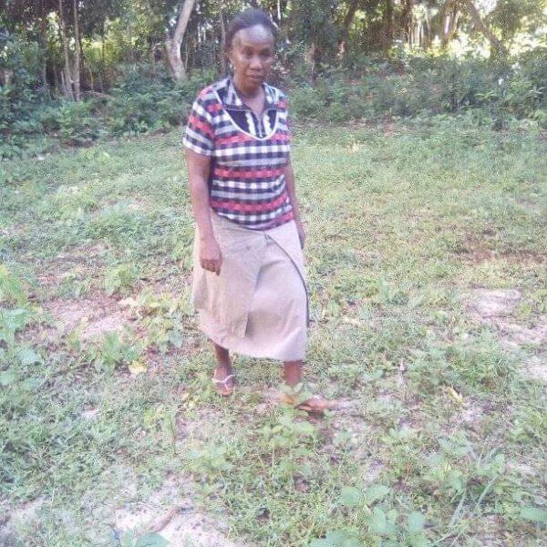 Soutien à une nouvelle école en Brousse malgache
